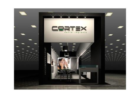 Cortex implant3